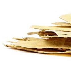 Astragalus (slices)