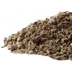 Echinacea P. (root)